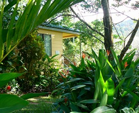Daintree Valley Haven - Accommodation Melbourne