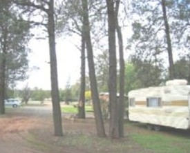 The Kelpie Caravan Park - Accommodation Melbourne