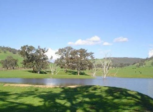 Hillview Farmstay - Accommodation Melbourne