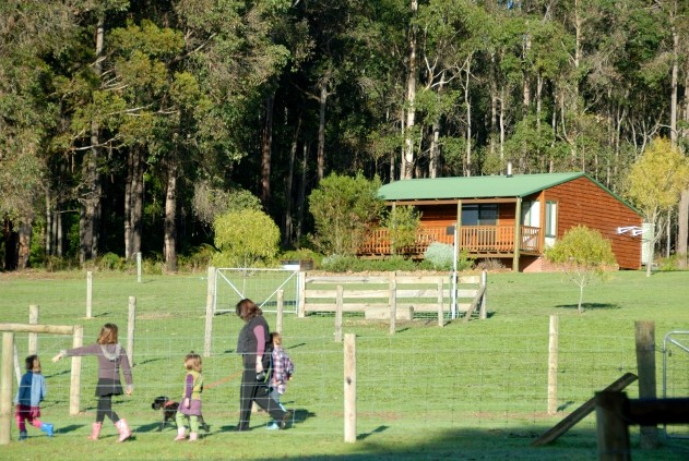Diamond Forest Farm Stay - Accommodation Melbourne