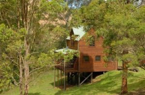Hookes Creek Forest Retreat - Accommodation Melbourne