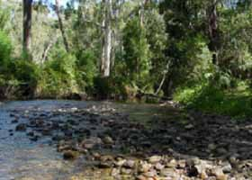 River Rest Country Cottage - Accommodation Melbourne
