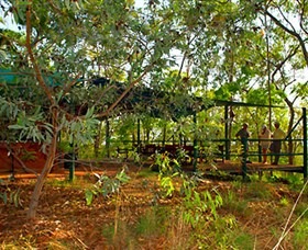 Arnhemland Barramundi Nature Lodge - Accommodation Melbourne