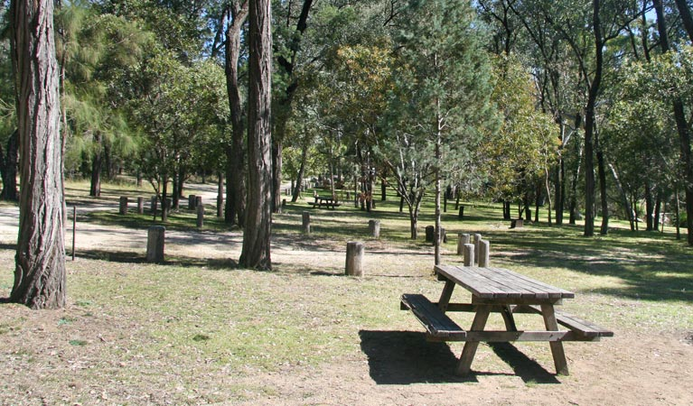 Lemon Tree Flat campground - Accommodation Melbourne
