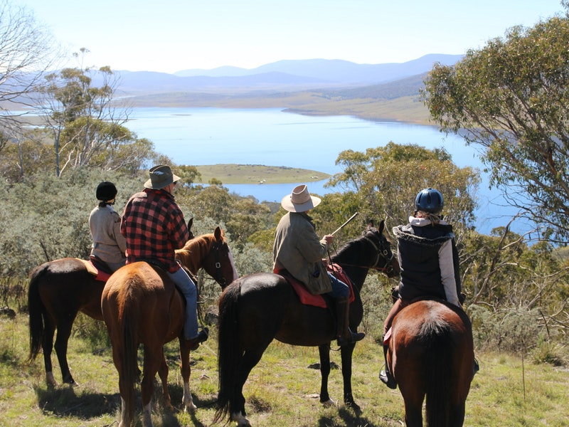 Reynella Homestead and Horseback Rides - Accommodation Melbourne