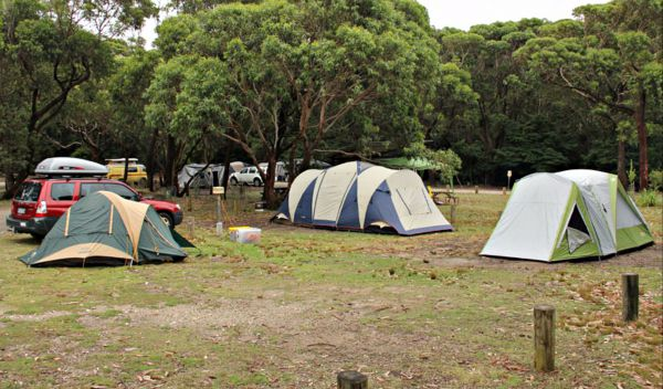 Pretty Beach Campground Murramarang National Park - Accommodation Melbourne