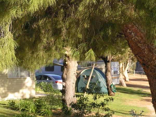 Barmera North Lake Caravan Park - Accommodation Melbourne