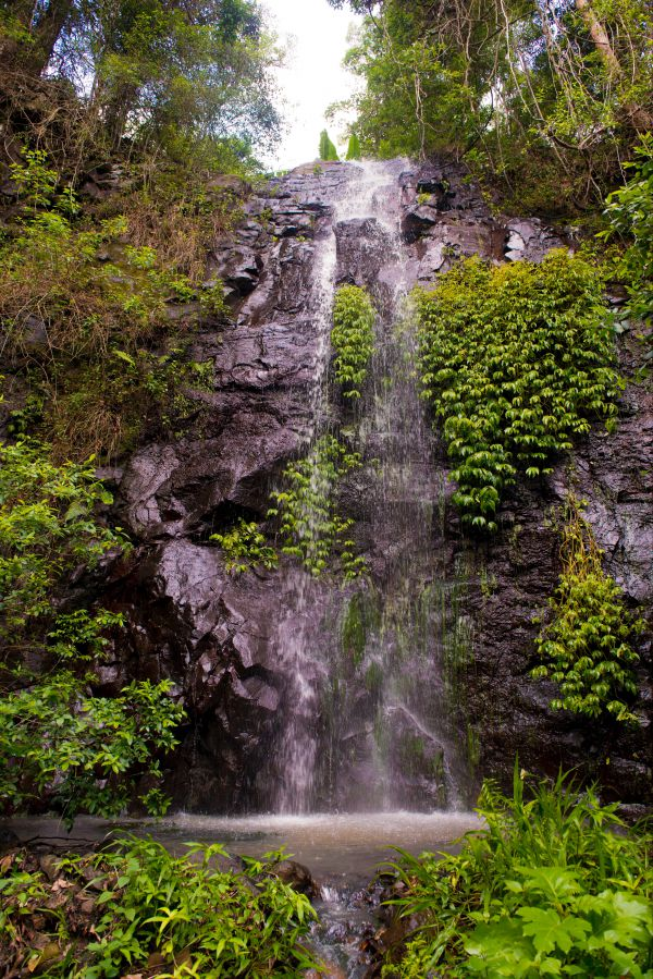 Nimbin waterfall retreat - Accommodation Melbourne