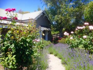 Valley View Cottage - Accommodation Melbourne
