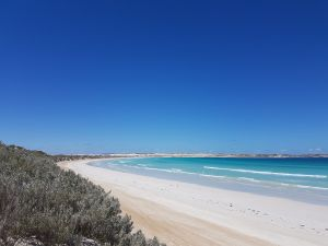 Coffin Bay National Park Campgrounds - Accommodation Melbourne