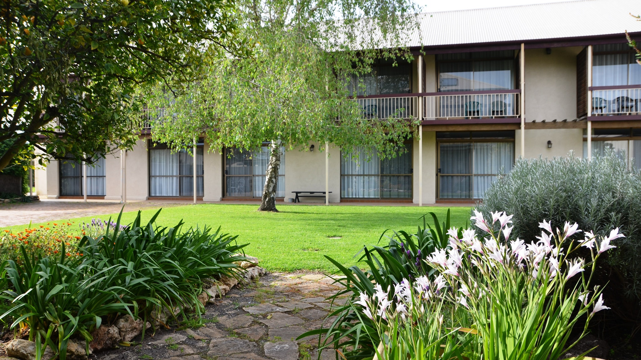 Coonawarra Motor Lodge - Accommodation Melbourne