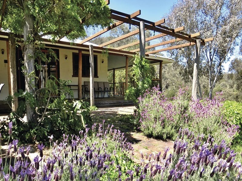 Capertee Homestead - 'Port Macquarie' - Accommodation Melbourne