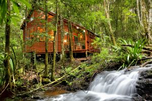 The Mouses House - Rainforest Retreat - Accommodation Melbourne