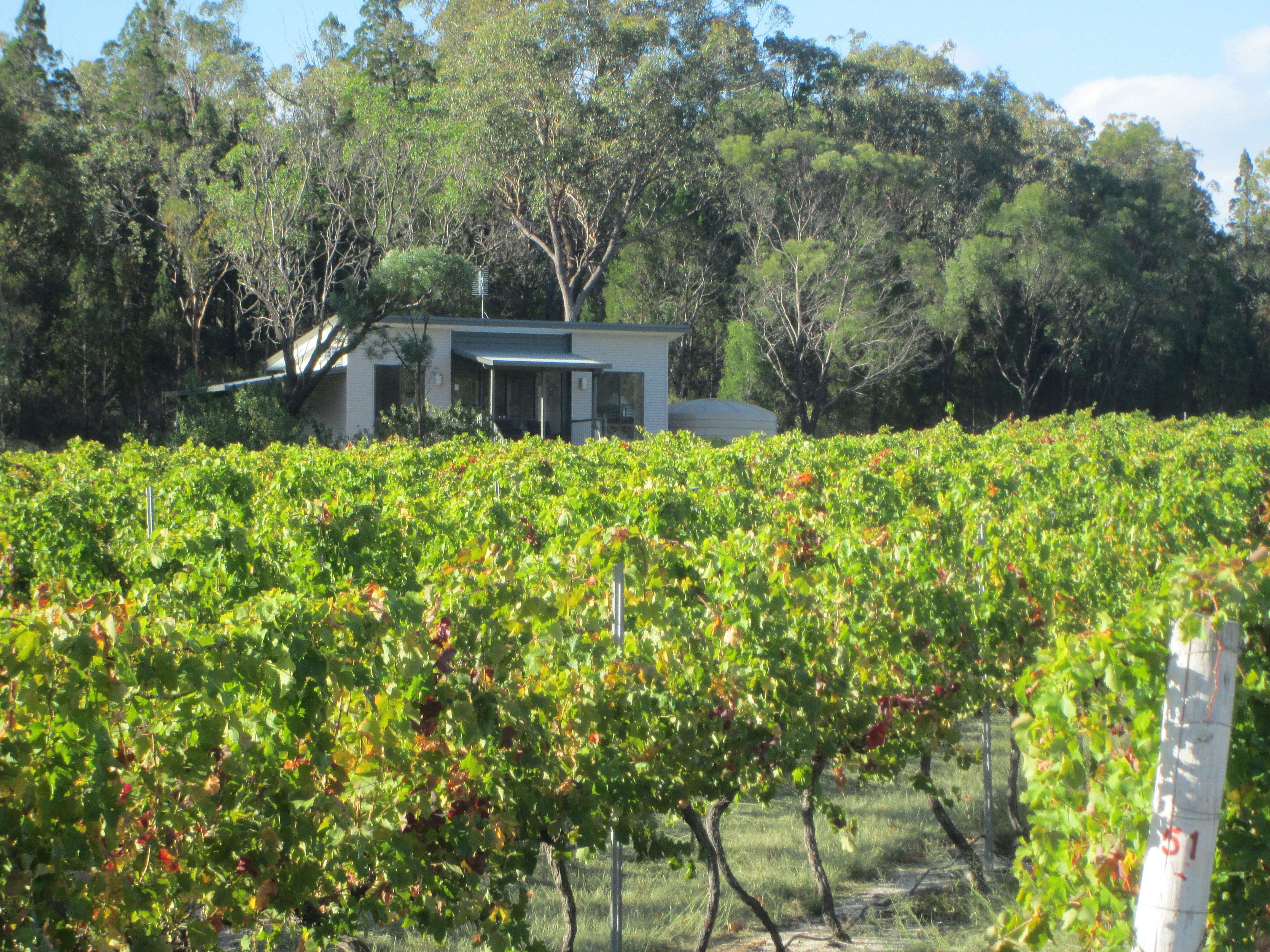 Just Red Wines Vineyard Cabins - Accommodation Melbourne