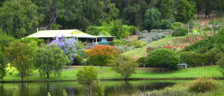 Pemberton Lavender and Berry Farm Cafe and Cottages - Accommodation Melbourne