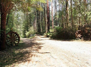 Hill n Dale Farm Cottages - Accommodation Melbourne