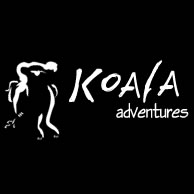 Koala Adventures - Accommodation Melbourne