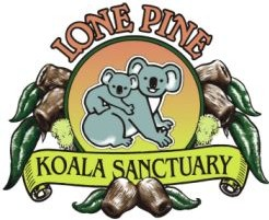 Lone Pine Koala Sanctuary - Accommodation Melbourne