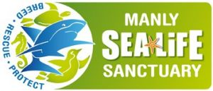 Manly SEA LIFE Sanctuary - Accommodation Melbourne