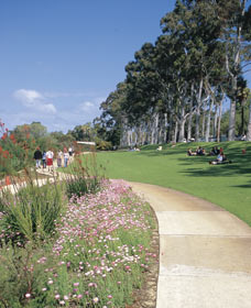Kings Park Free Guided Walks - Accommodation Melbourne
