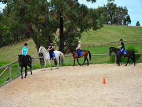 Megan Jones Riding School and Trail Rides - Accommodation Melbourne