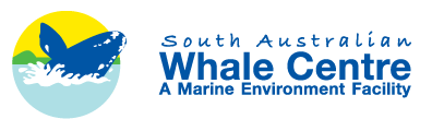 South Australian Whale Centre - Accommodation Melbourne