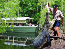 Hartleys Crocodile Adventures - Accommodation Melbourne