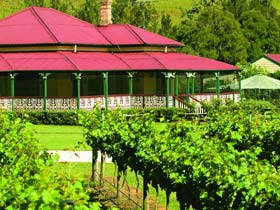 OReillys Canungra Valley Vineyards - Accommodation Melbourne