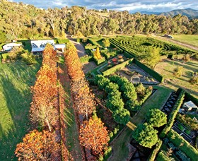 High Country Maze - Accommodation Melbourne