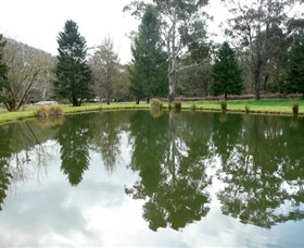 Mountain Fresh Trout and Salmon Farm - Accommodation Melbourne