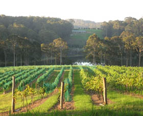 Tilba Valley Wines - Accommodation Melbourne