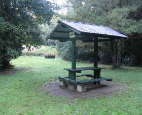 Pine Creek State Forest - Accommodation Melbourne