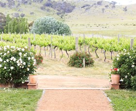 Brindabella Hills Winery - Accommodation Melbourne