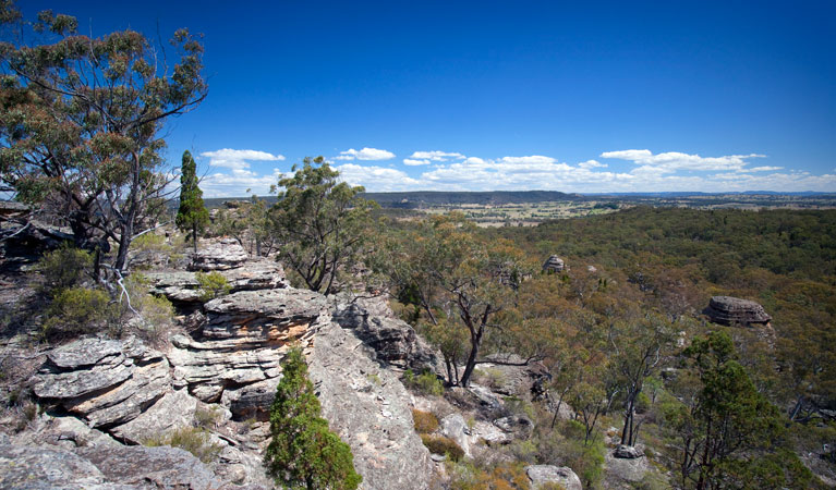 Munghorn Gap Nature Reserve - Accommodation Melbourne