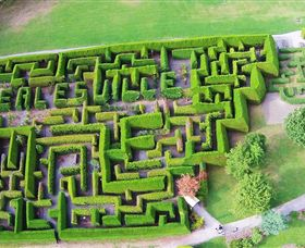Hedgend Maze and Healesville Laser Sport - Accommodation Melbourne