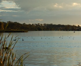Lake Inverell Reserve - Accommodation Melbourne
