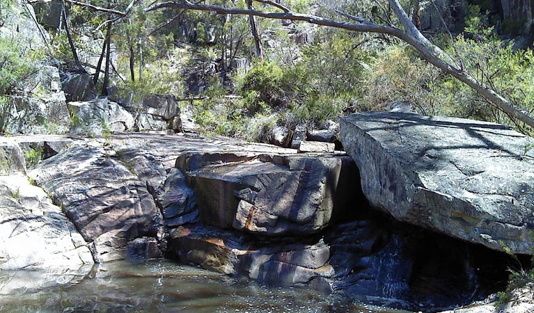 Torrington State Conservation Area - Accommodation Melbourne