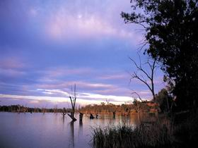 Loch Luna Game Reserve and Moorook Game Reserve - Accommodation Melbourne