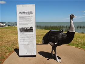 Birdman of the Coorong - Accommodation Melbourne
