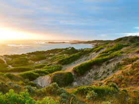 Beachport Conservation Park - Accommodation Melbourne