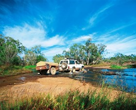 Rinyirru Lakefield National Park CYPAL - Accommodation Melbourne