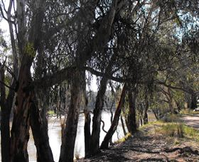 Mia Forest Drives Narrandera - Accommodation Melbourne