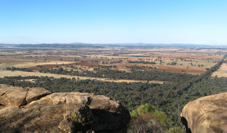 Basin Gully to Eualdrie lookout track - Accommodation Melbourne