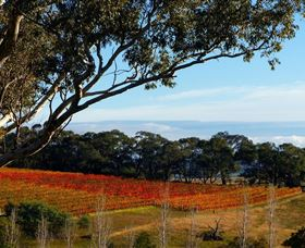 Bloodwood Estate - Accommodation Melbourne