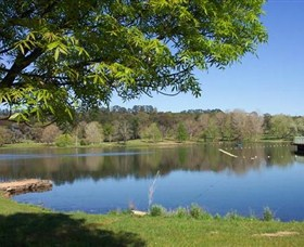 Lake Canobolas Reserve - Accommodation Melbourne