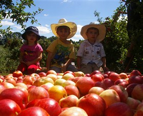 Bonny Glen Fruits - Accommodation Melbourne
