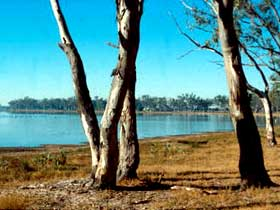 Lake Broadwater Conservation Park - Accommodation Melbourne