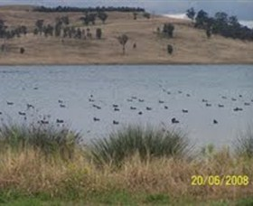 Lake Liddell Recreation Area - Accommodation Melbourne