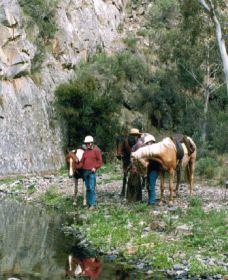 Yarramba Horse Riding - Accommodation Melbourne