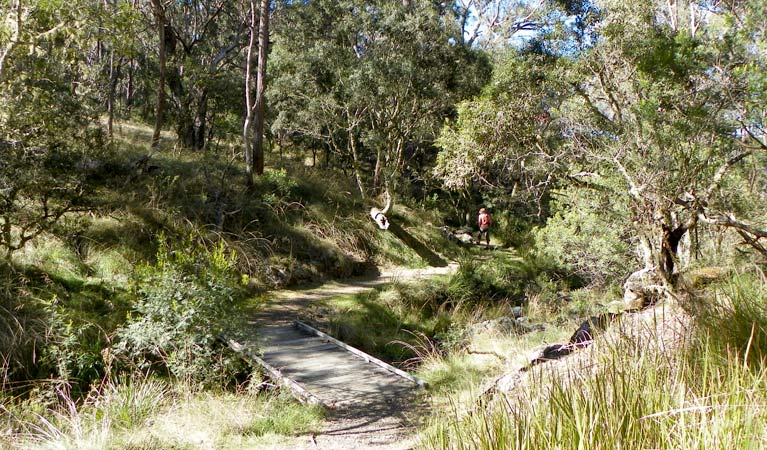 Wollomombi walking track - Accommodation Melbourne